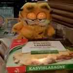 Felis Garfieldus tyypillisen ravintonsa äärellä